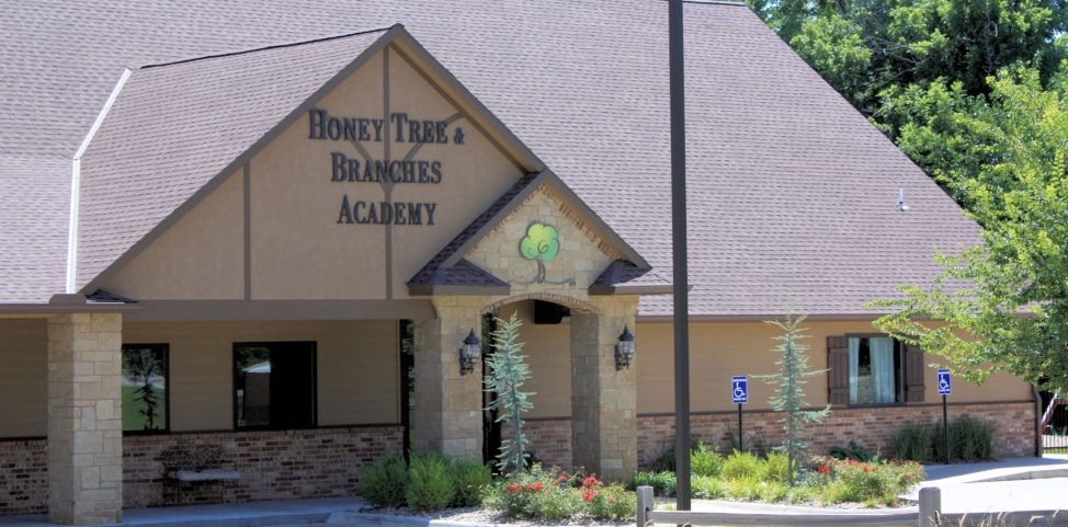 Front of Honey Tree